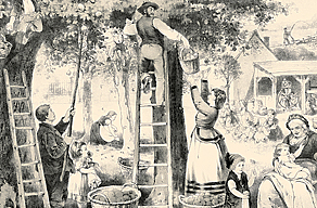 Obstzählung 1900